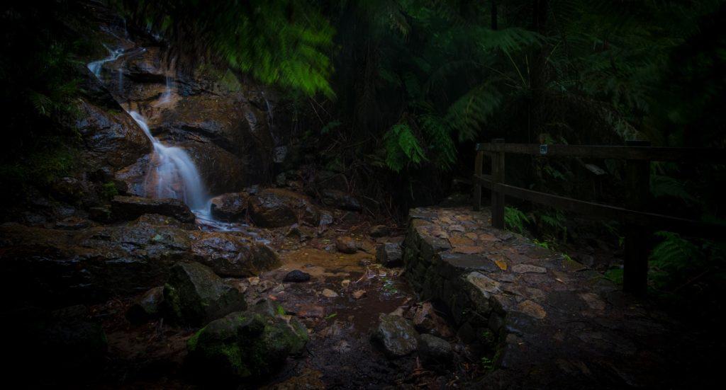 stone walkway and waterfall